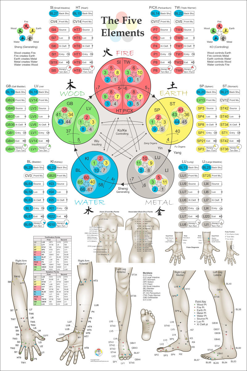 Five Element Acupuncture Theory Poster