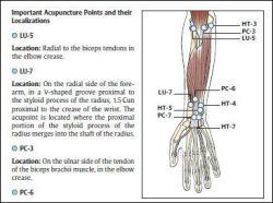 color atlas of acupuncture pdf