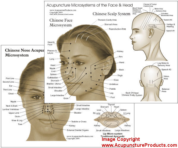Microsystems of Acupuncture Chart
