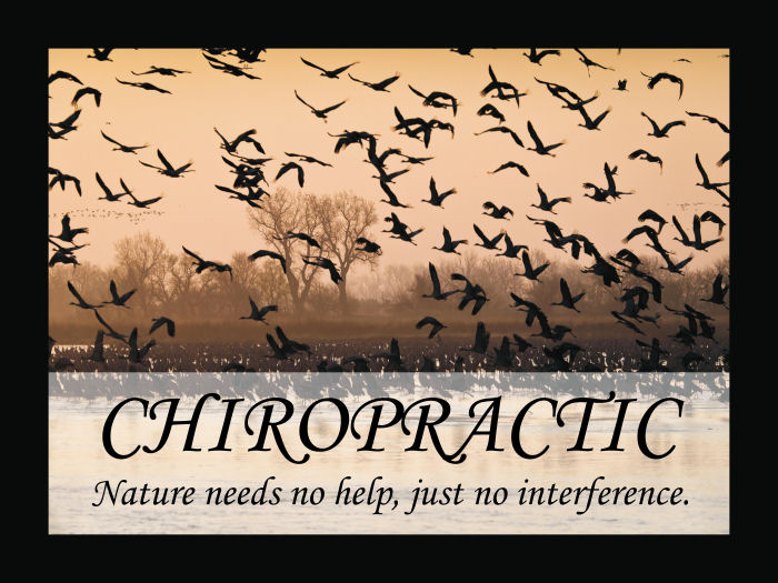 Chiropractic Quote Poster