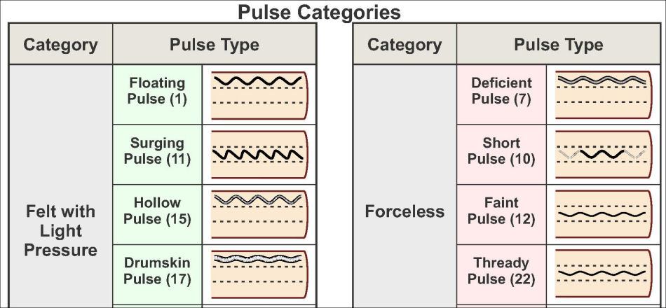 Chinese Pulse Diagnosis Categories Poster