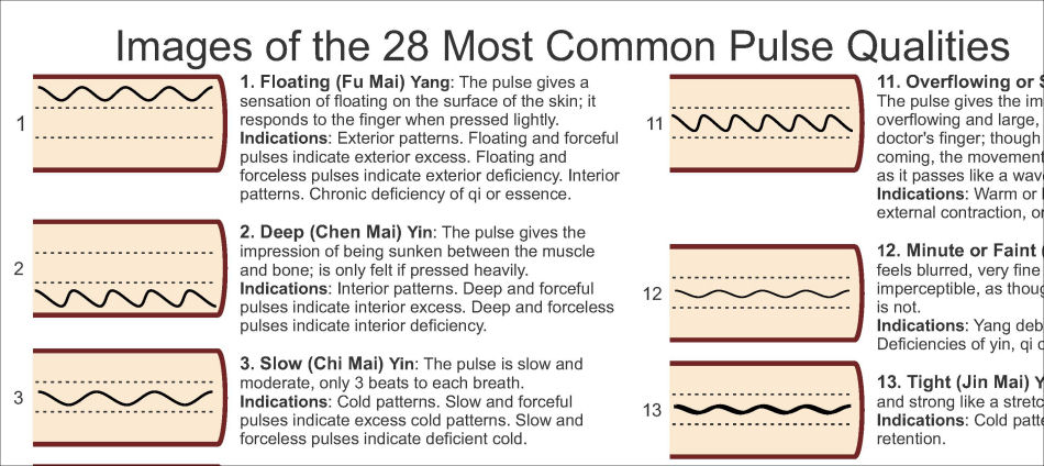 Pulse Diagnosis Poster