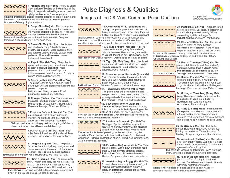Pulse Diagnosis Images Chart