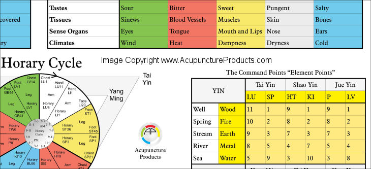 Five Elements Acupuncture Poster