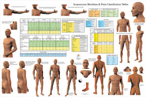 Acupuncture meridian Poster