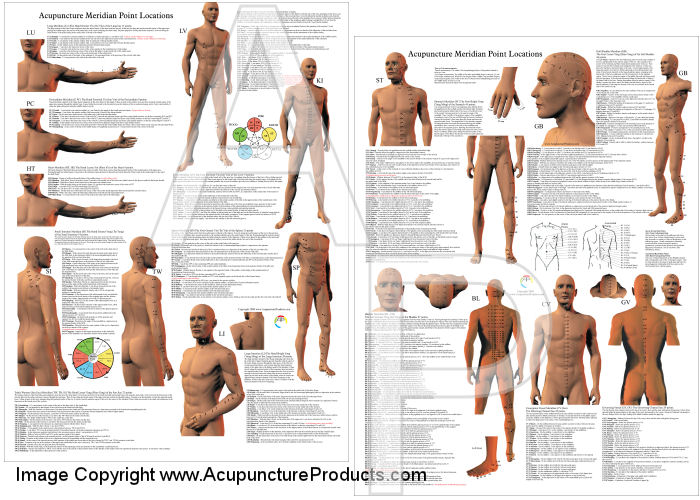 Acupuncture Point Locations Posters